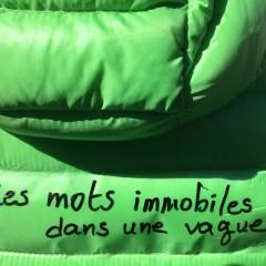 Les Immobiles - 1ère sortie de résidence 10.03.18